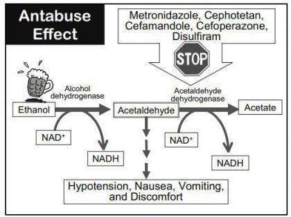 Antabuse side effects