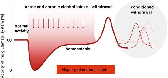 alcohol withdrawal seizures