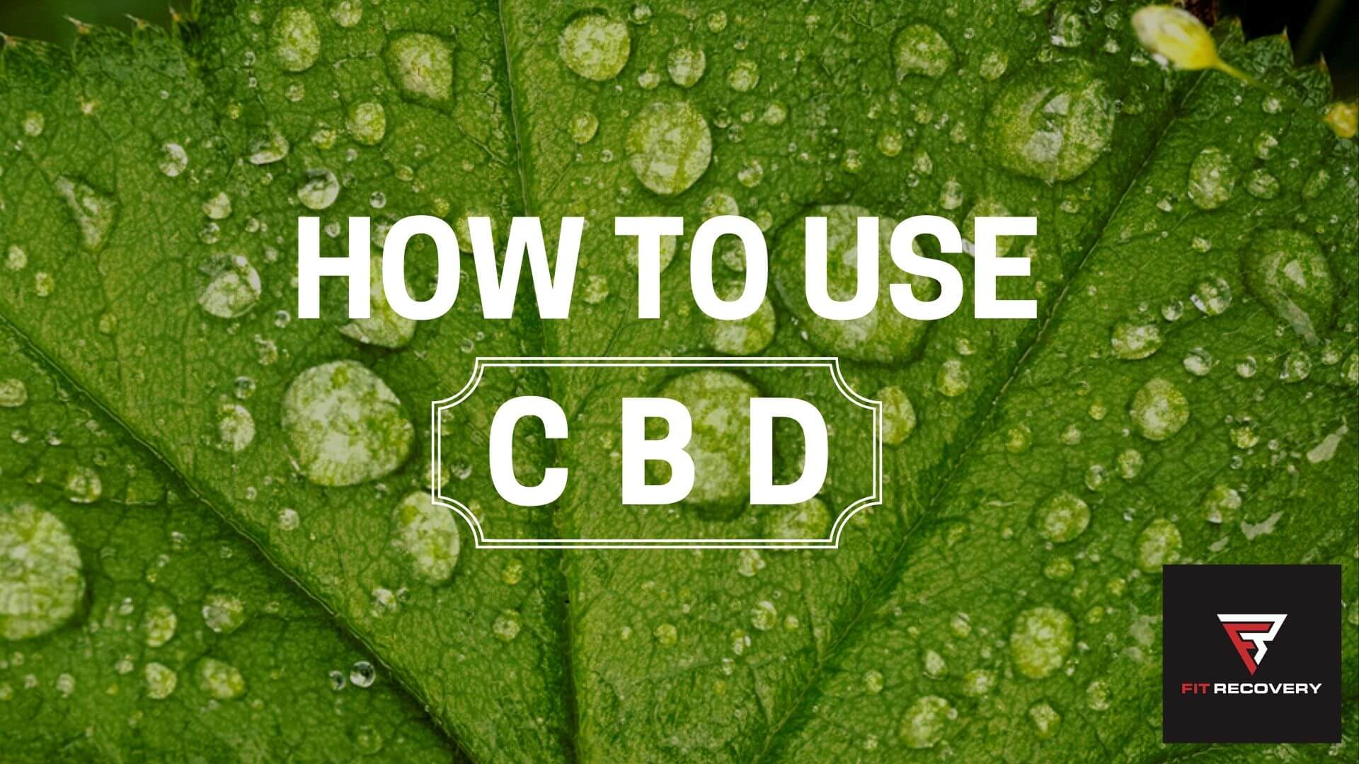 CBD For Alcohol Withdrawal
