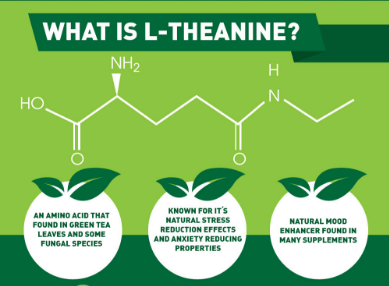 l-theanine and alcohol withdrawal